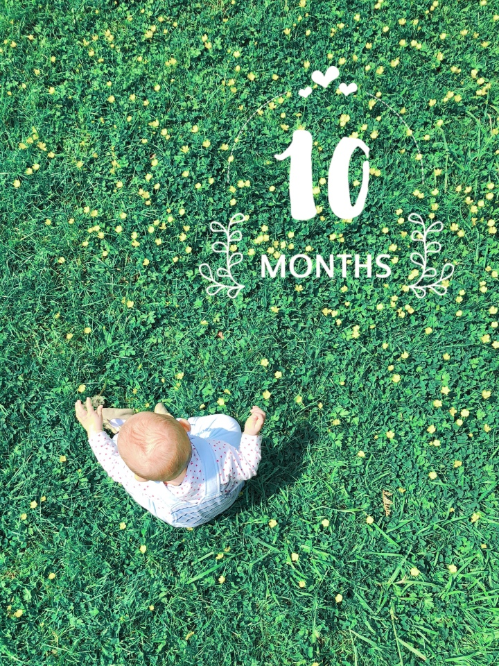 Today, I'm 10 months old